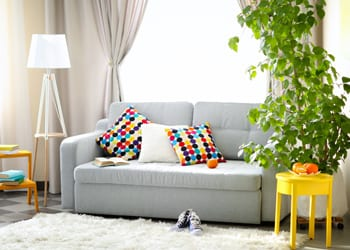https://www.hoekmodularhomes.com/wp-content/uploads/2017/03/hoek_modular_homes_Granny_Flat_Interior_Designs_To_Brighten_Everyday_PopofColour_Lounge.jpg