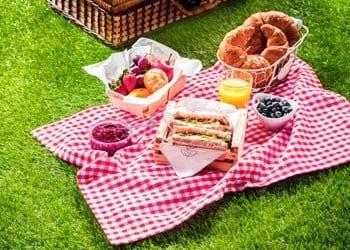 Holiday At Home Lawn Picnic